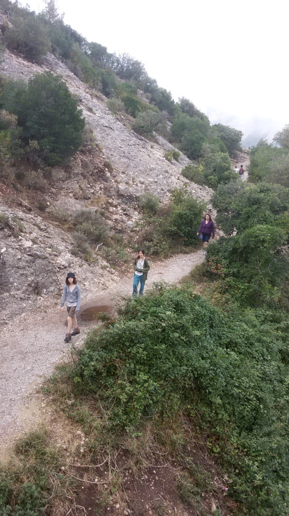 0220-08-01-Montserrat